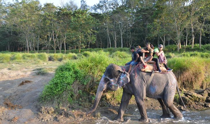 elephant-safari-at-chitwan
